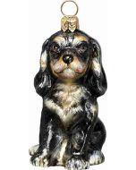 Cavalier King Puppy Black & Tan
