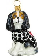Cavalier King Tri Color with Hounds Tooth Coat