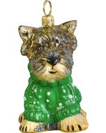 Yorkie Puppy in Green Cable Knit Sweater