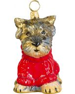 Yorkie Puppy in Red Cable Knit Sweater
