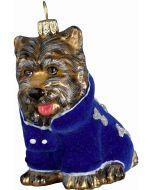 DIVA Yorkshire Terrier in Blue Velvet Coat - Now on Clearance!