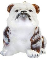 Bulldog Brown & White - Snowy Version