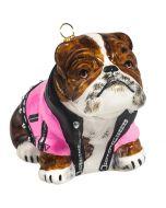 Bulldog in Pink Motorcycle Jacket