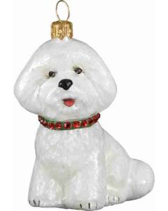 Bichon Frise With Red & Green Collar