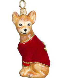 DIVA Chihuahua with Red Velvet Coat