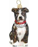 American Staffordshire Terrier Brindle