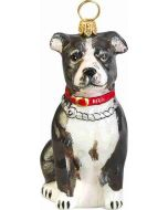 American Staffordshire Terrier Black and White