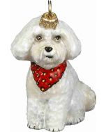 Bichon Frise Puppy with Bandana