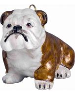 Bulldog Brown & White