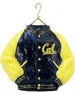 California Varsity Jacket - Now on Clearance!