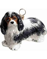 Cavalier King Charles - Tricolor