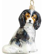 Cavalier King Tri Color