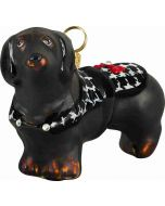 Dachshund Black with Hounds Tooth Coat