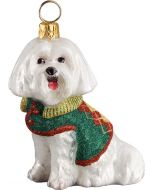 DIVA Maltese In Argyle Sweater