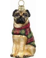 DIVA Pug with Tartan Plaid Coat