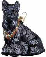 Scottish Terrier with Tartan Bandana