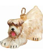 Soft Coated Wheaten Terrier Play Bow Version