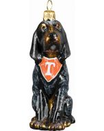 Tennessee Blue Tick Hound