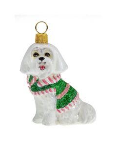 Maltese in Pink and Green Sweater - Now on Clearance!