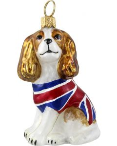 Cavalier King Charles Spaniel Blenheim with Union Jack Coat