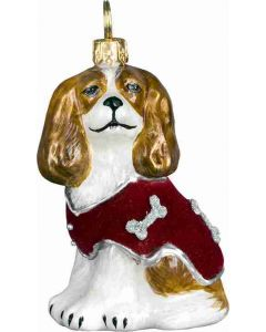 Cavalier King with Red Velvet Coat