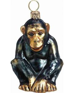 Wild Side - Chimpanzee