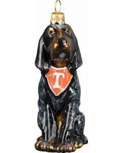 Tennessee Blue Tick Hound