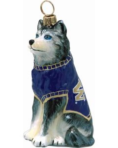 Washington Husky Mascot - Now on Clearance!