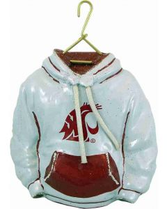 Washington State Hoodie - Now on Clearance!