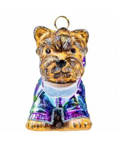 Yorkshire Terrier in Metallic Ski Jacket & Goggles - NEW!