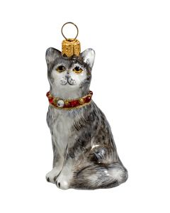 American Shorthair Gray with Swarovski Crystal Collar