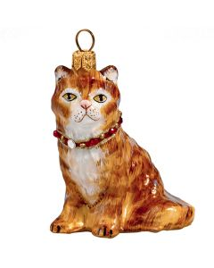 Maine Coon Red Cat with Swarovski Crystal Collar