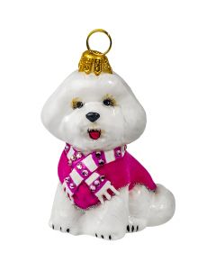 Bichon Frise with Pink Velvet Coat