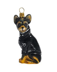 Chihuahua Tri Color in Black Motorcycle Jacket