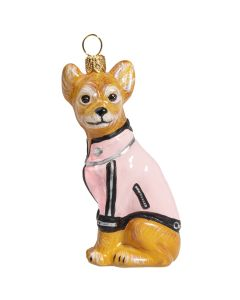 Chihuahua in Pink Motorcycle Jacket