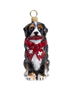 Bernese Mountain Dog with Scarf & Crystal Flying Disc - NEW!