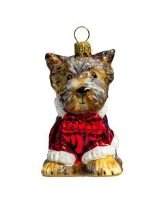 Yorkshire Terrier with Candy Cane Sweater