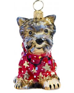 Yorkshire Terrier in Ugly Christmas Sweater